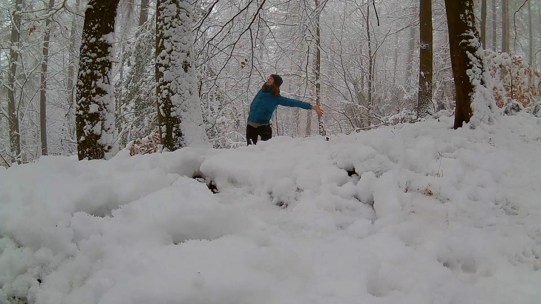 daily dance – snow